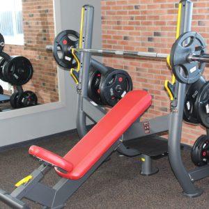 Физкультурно-оздоровительное оборудование (фитнес)